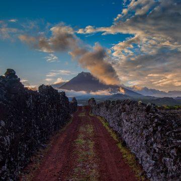 ilha-do-pico-vinhos-originais