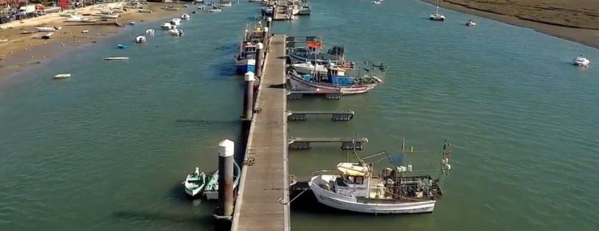 pesca-ao-polvo