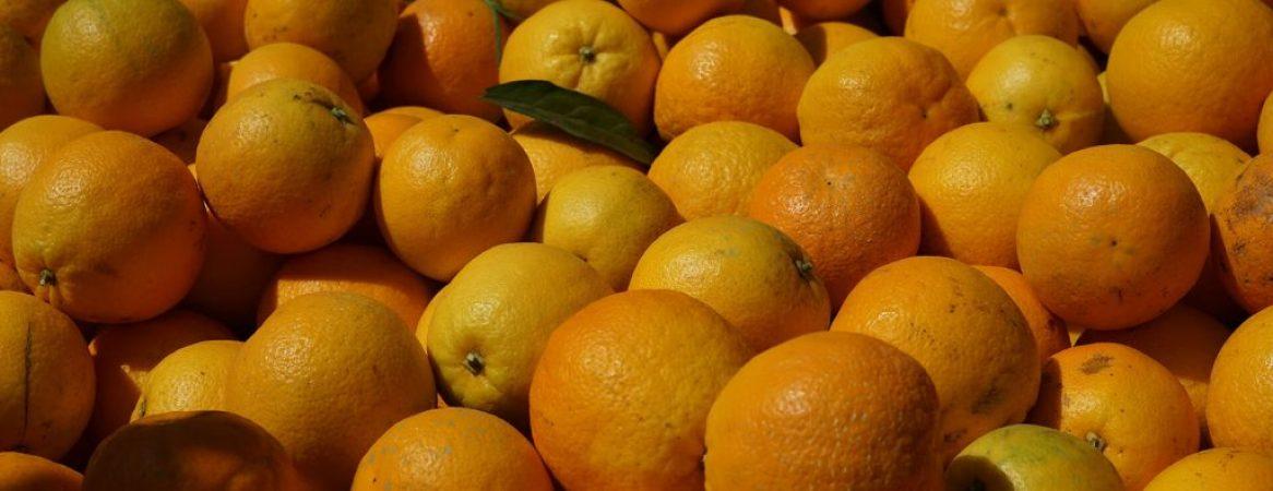 laranja-do-algarve