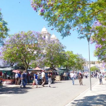 Banca do Ti Henrique (mercado estremoz)